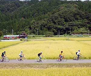 bicycle through Kannabe
