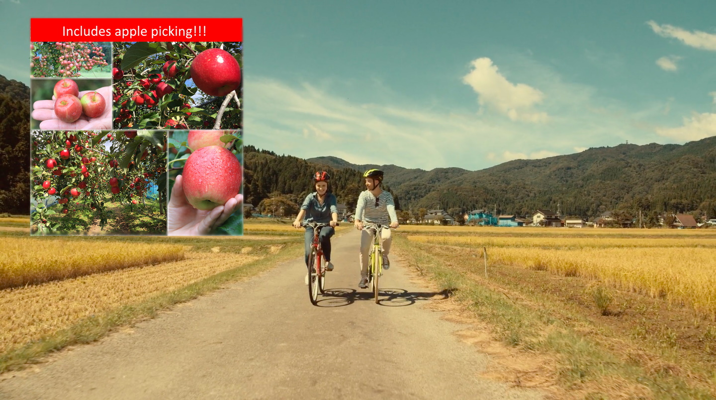 Kannabe Apple Picking & Highlands Cycling Tour
